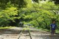 京都新聞写真コンテスト 新緑を駈ける