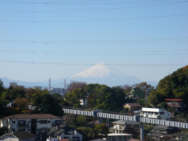 f:id:igarashi-shika-staff:20081130121532j:image:w360:left