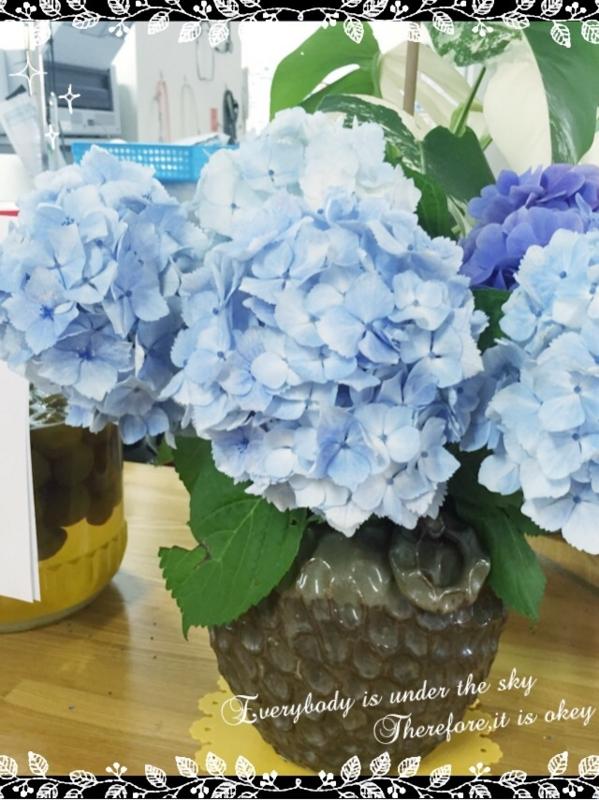 f:id:igarashi-shika-staff:20160619225254j:image:w360