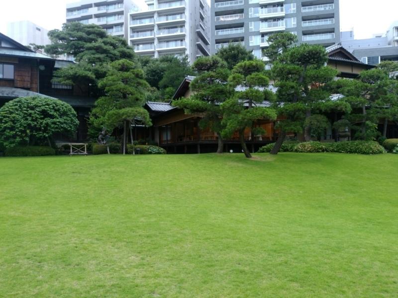 f:id:igarashi-shika-staff:20180614220304j:image