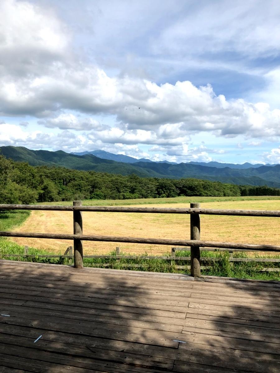 f:id:igarashi-shika-staff:20190823185409j:plain
