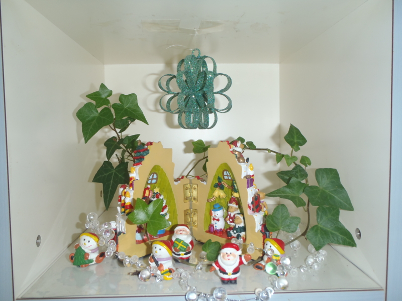 f:id:igarashi-shika:20121220130543j:image