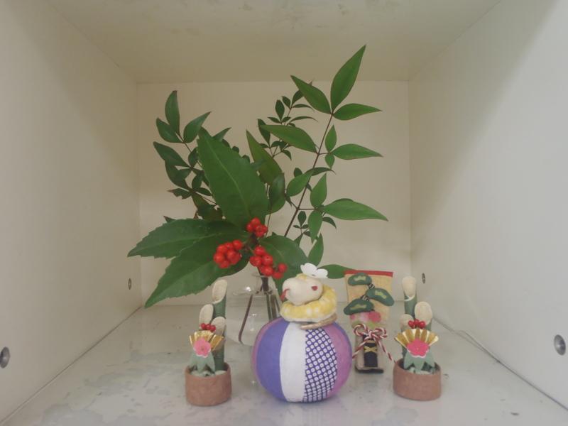 f:id:igarashi-shika:20130104151622j:image