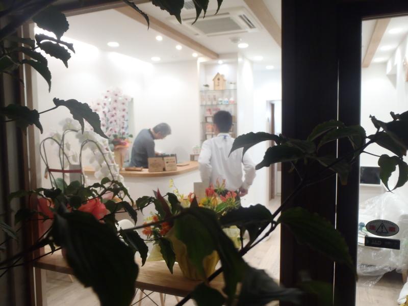 f:id:igarashi-shika:20130531205947j:image:w360