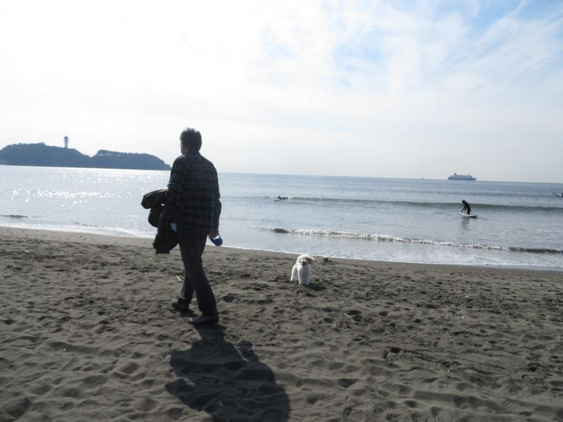 f:id:igarashi-shika:20141030103408j:image:w360