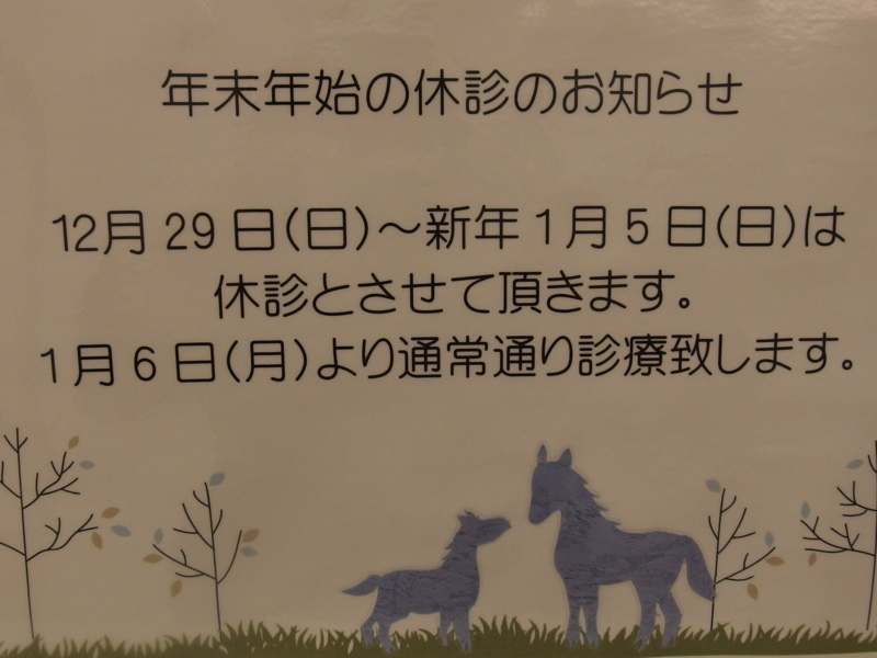 f:id:igarashi-shika:20141229140544j:image:w360