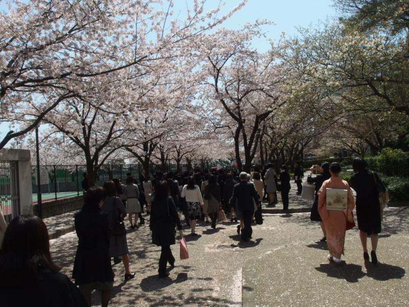 f:id:igarashi-shika:20150407111737j:image:w360
