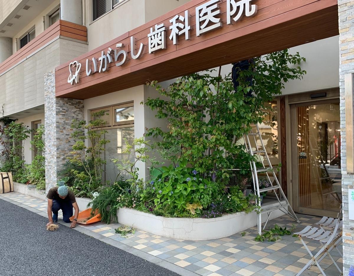 f:id:igarashi-shika:20190606142619j:plain