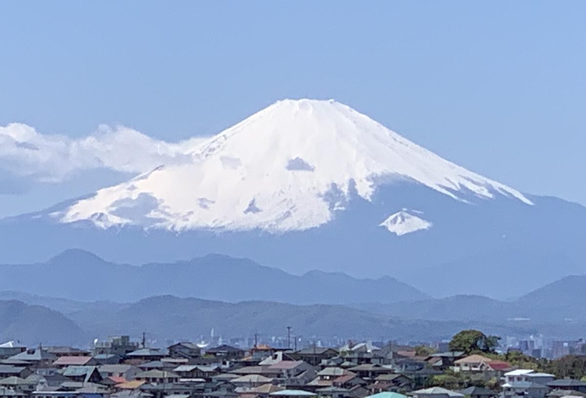 f:id:igarashi-shika:20200419122855j:plain