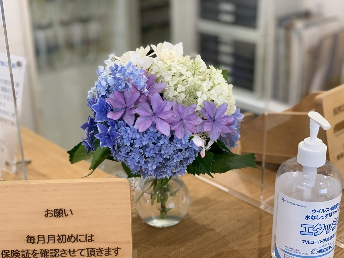 f:id:igarashi-shika:20200620075833j:plain