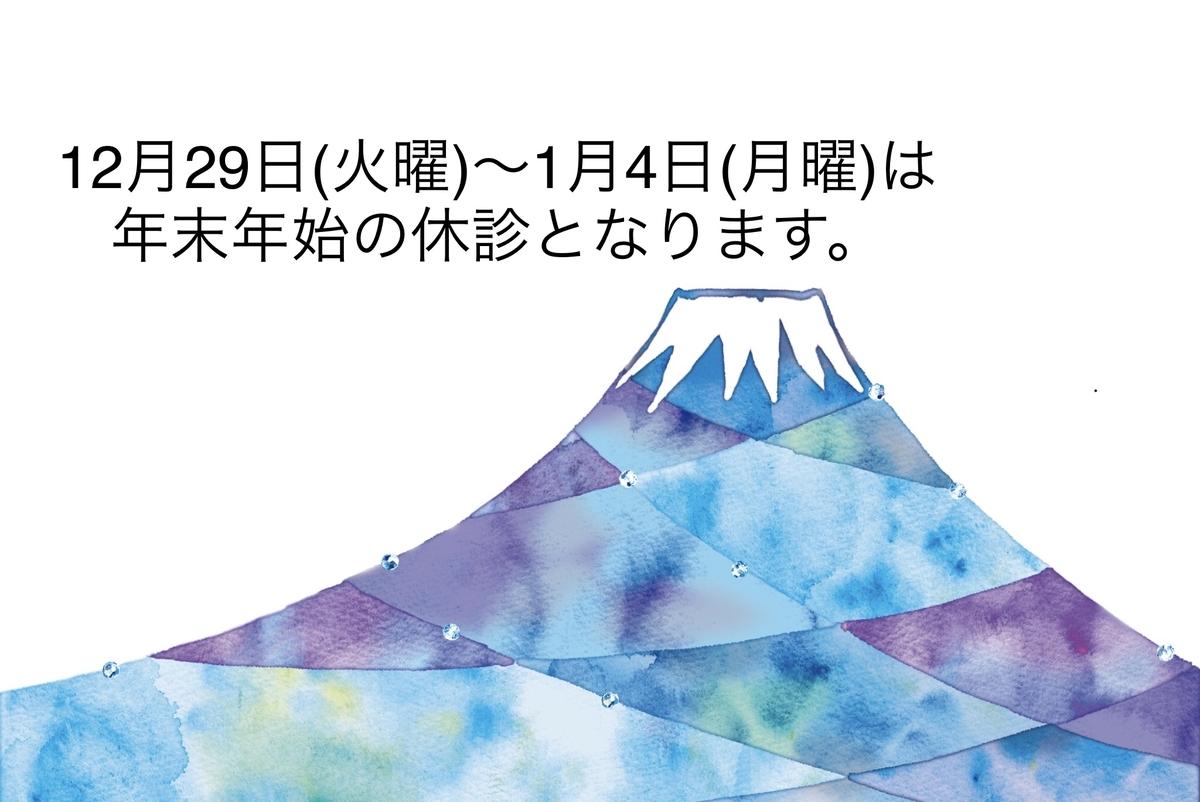 f:id:igarashi-shika:20201229132000j:plain