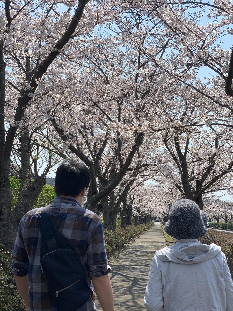 f:id:igarashi-shika:20210327190015j:plain