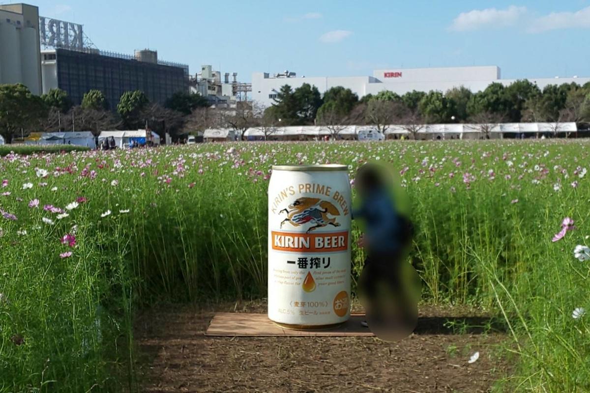 キリンビール福岡工場 コスモス2019 iggy2019