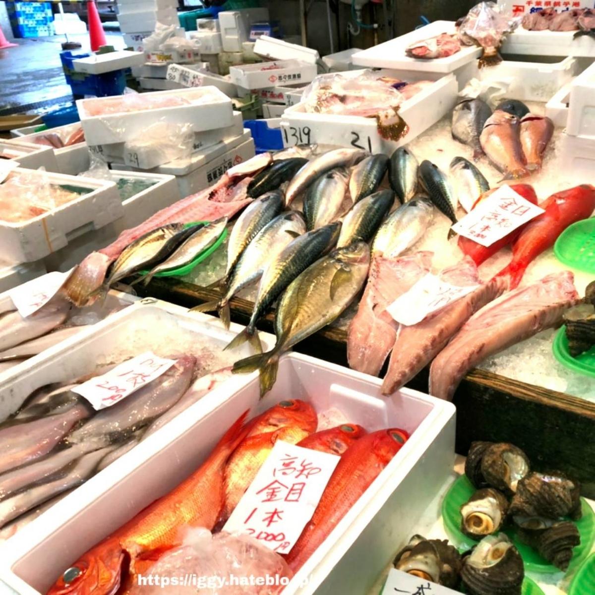 長浜鮮魚市場 鮮魚 iggy2019