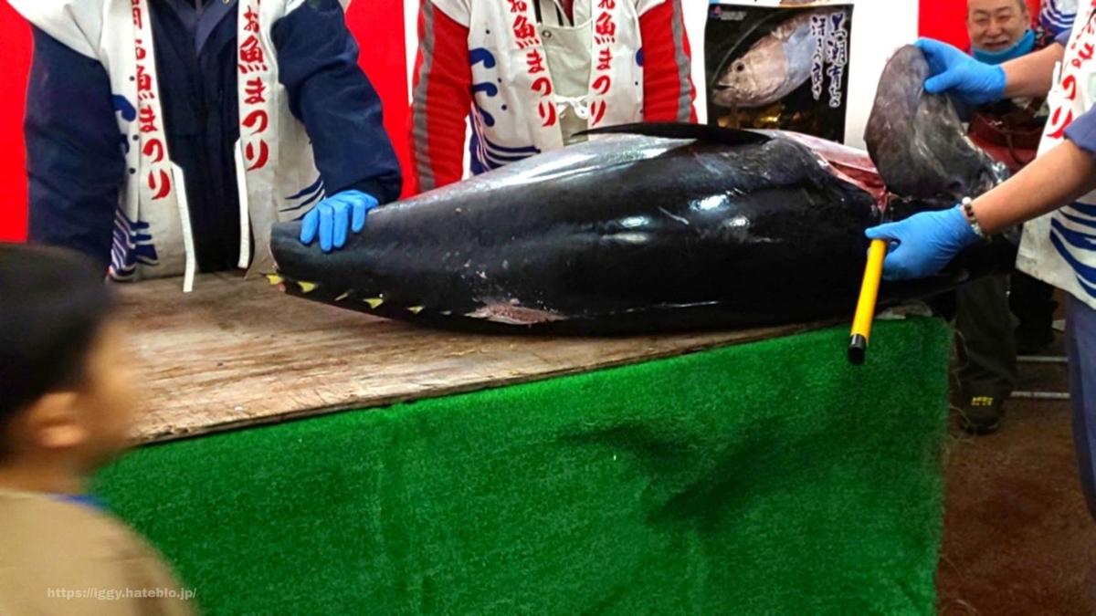 長浜鮮魚市場 本マグロ解体ショーかぶと iggy2019