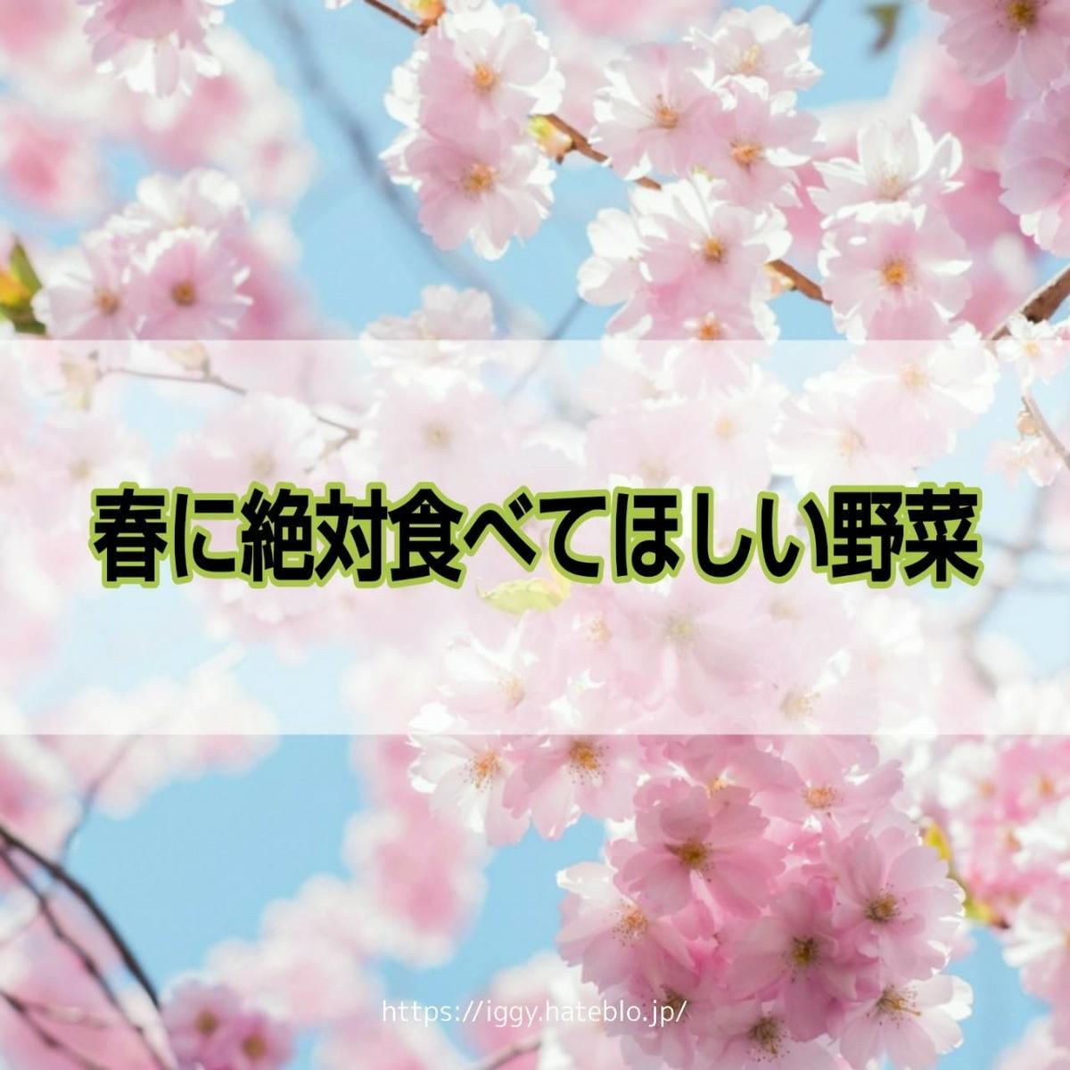 春の野菜 iggy2019