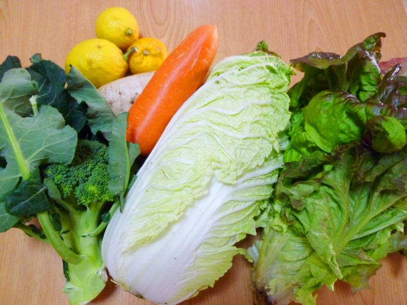 鹿児島の無農薬野菜