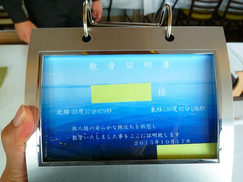 錦江湾 クルージング