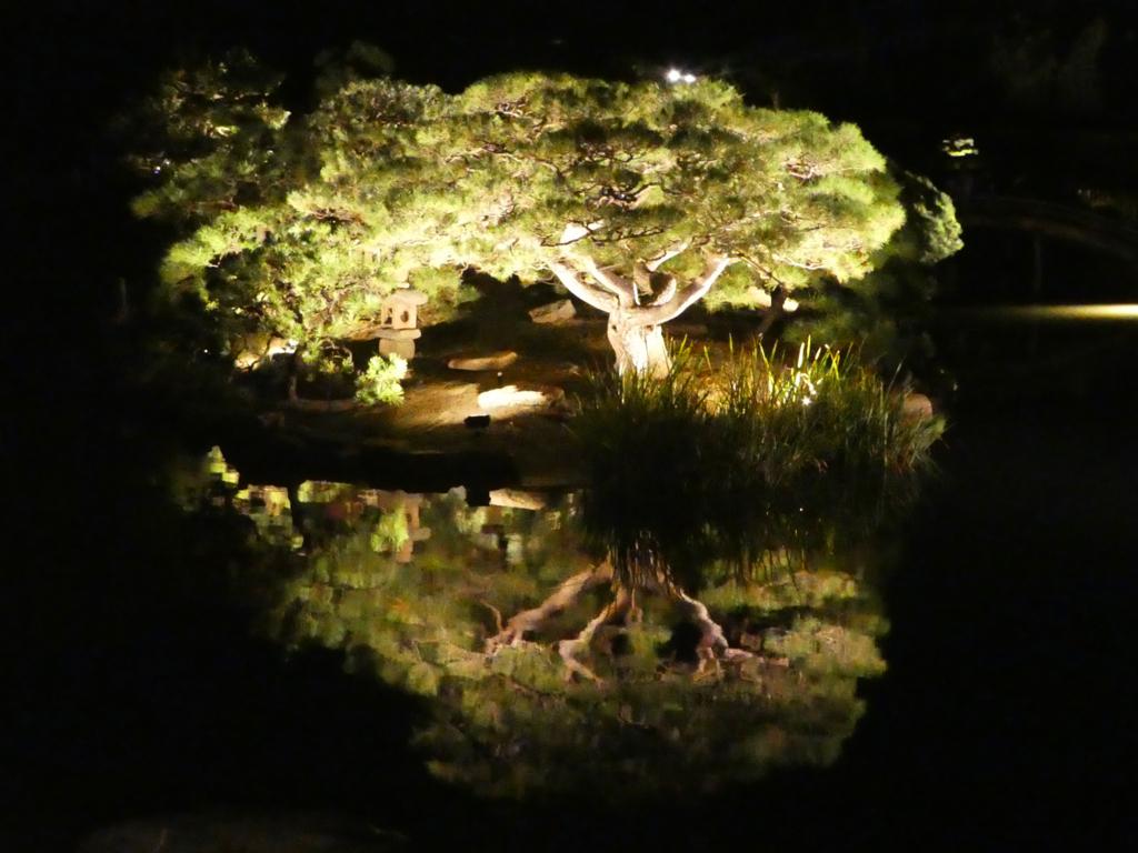 夏の幻想庭園 後楽園