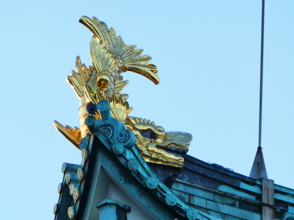 名古屋城 観光