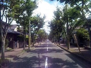 f:id:iguchi_akira:20100708232652j:image:left