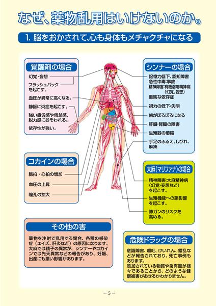 薬物身体への影響