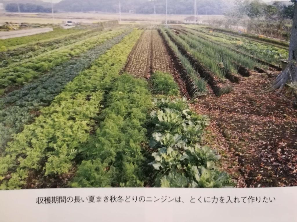 f:id:iihara-farm:20181005024020j:plain
