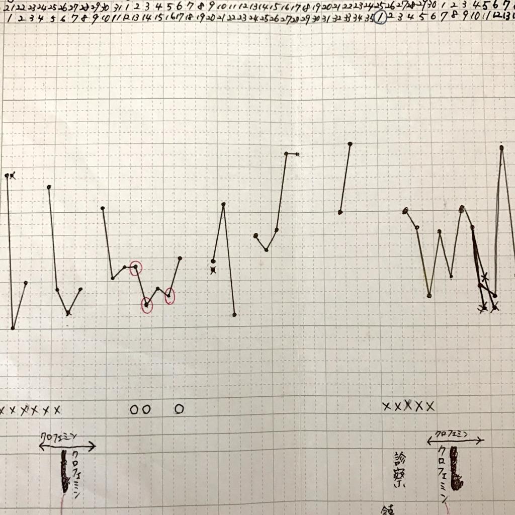 基礎体温表1