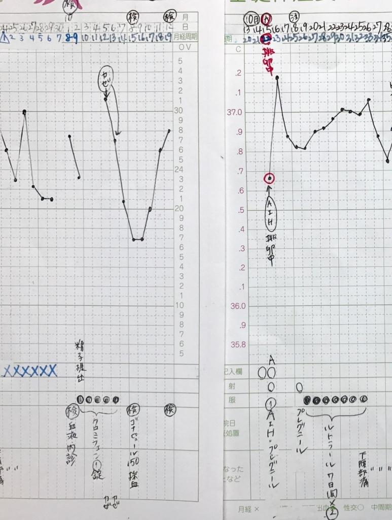 KLC基礎体温表16周期目