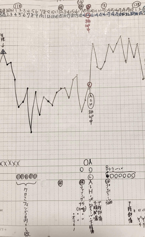 KLC基礎体温表17周期目