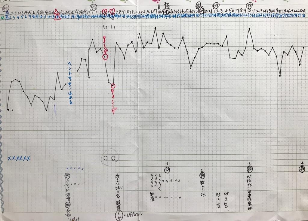 KLC基礎体温表21妊娠期