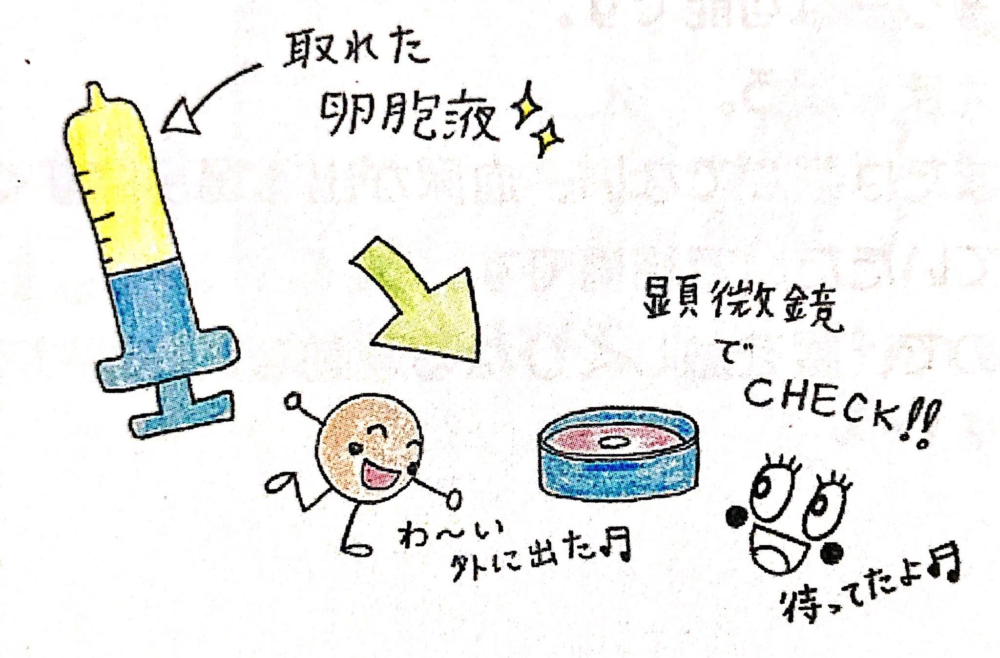 神奈川レデュースクリニックIVF説明会資料1