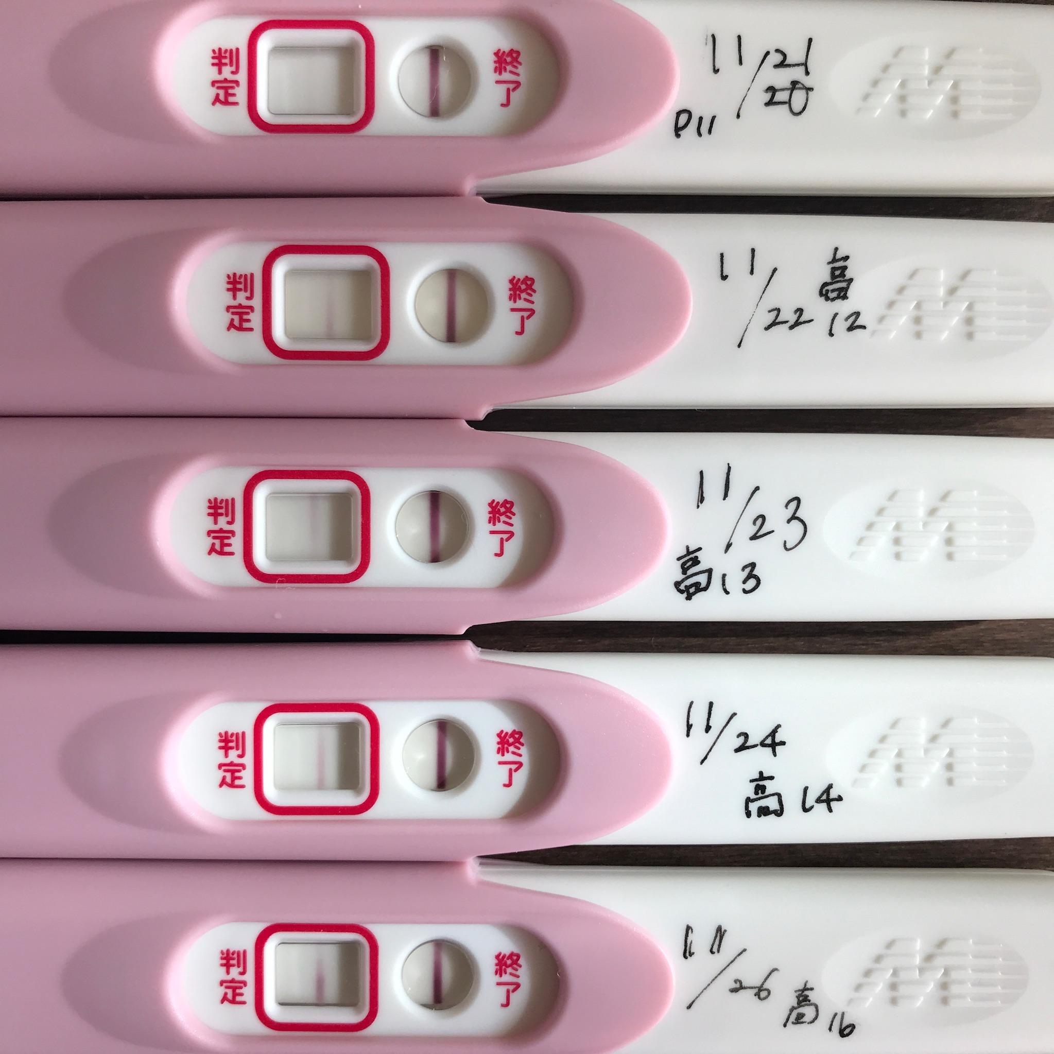 妊娠検査薬Pcheckの陽性反応高温期11・12・13・14・16日目5日分