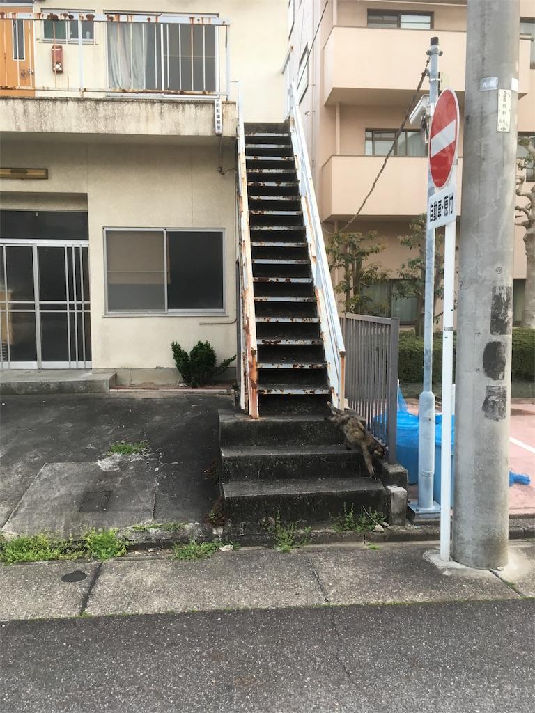 f:id:iimuramura:20170417211559j:image