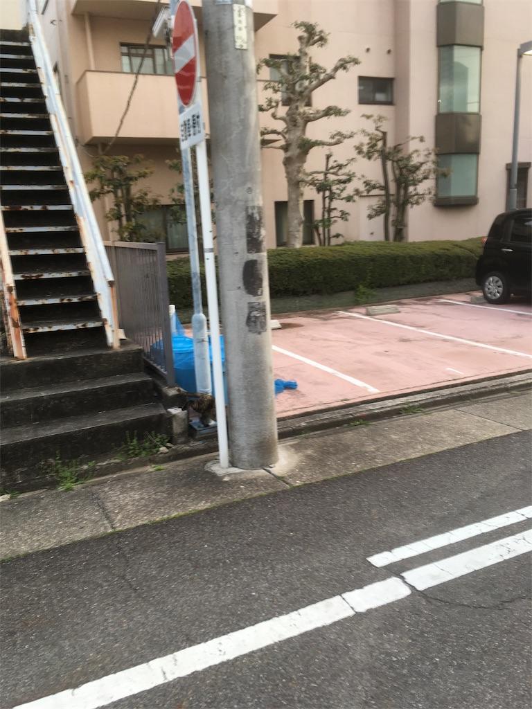f:id:iimuramura:20170417211606j:image