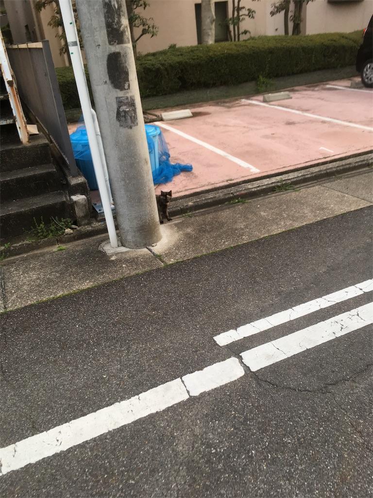 f:id:iimuramura:20170417211609j:image