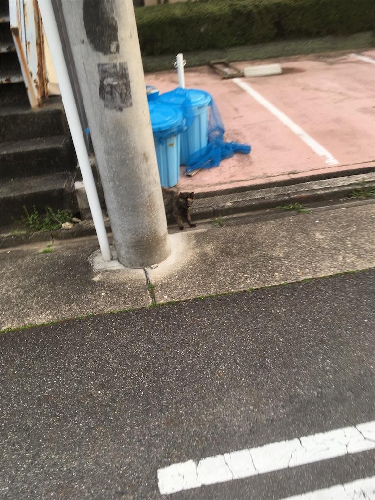 f:id:iimuramura:20170417211616j:image
