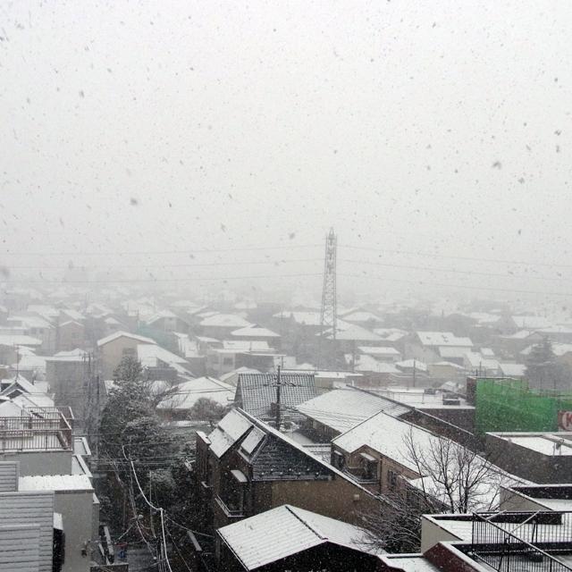 お江戸の雪