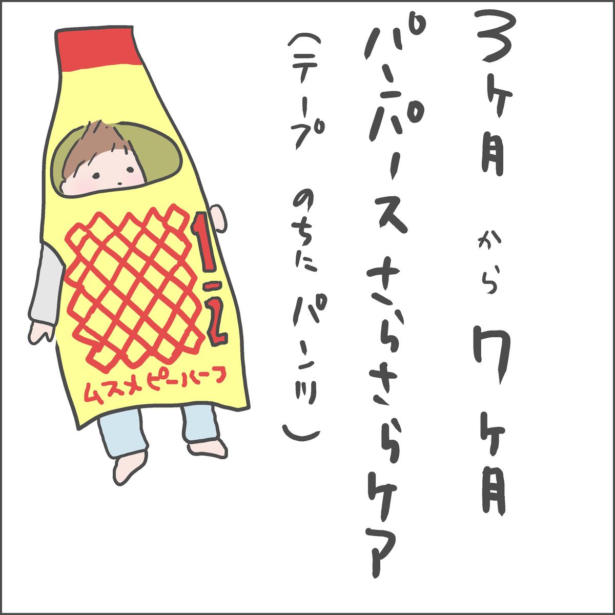 f:id:ika_yoshi:20210109225848j:plain