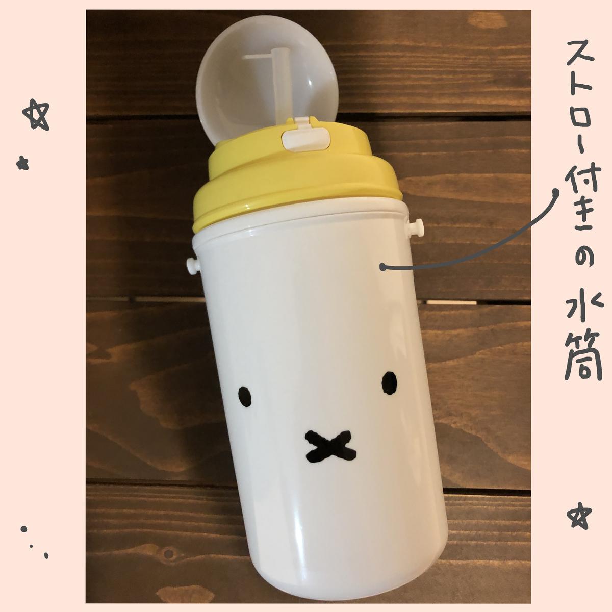 f:id:ika_yoshi:20210122235022j:plain
