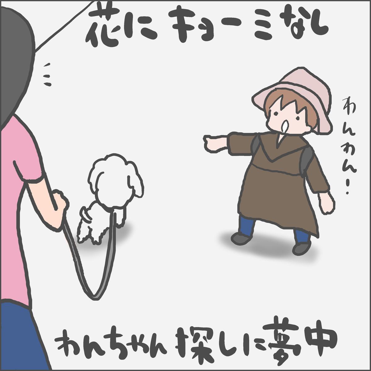 f:id:ika_yoshi:20210404224143j:plain