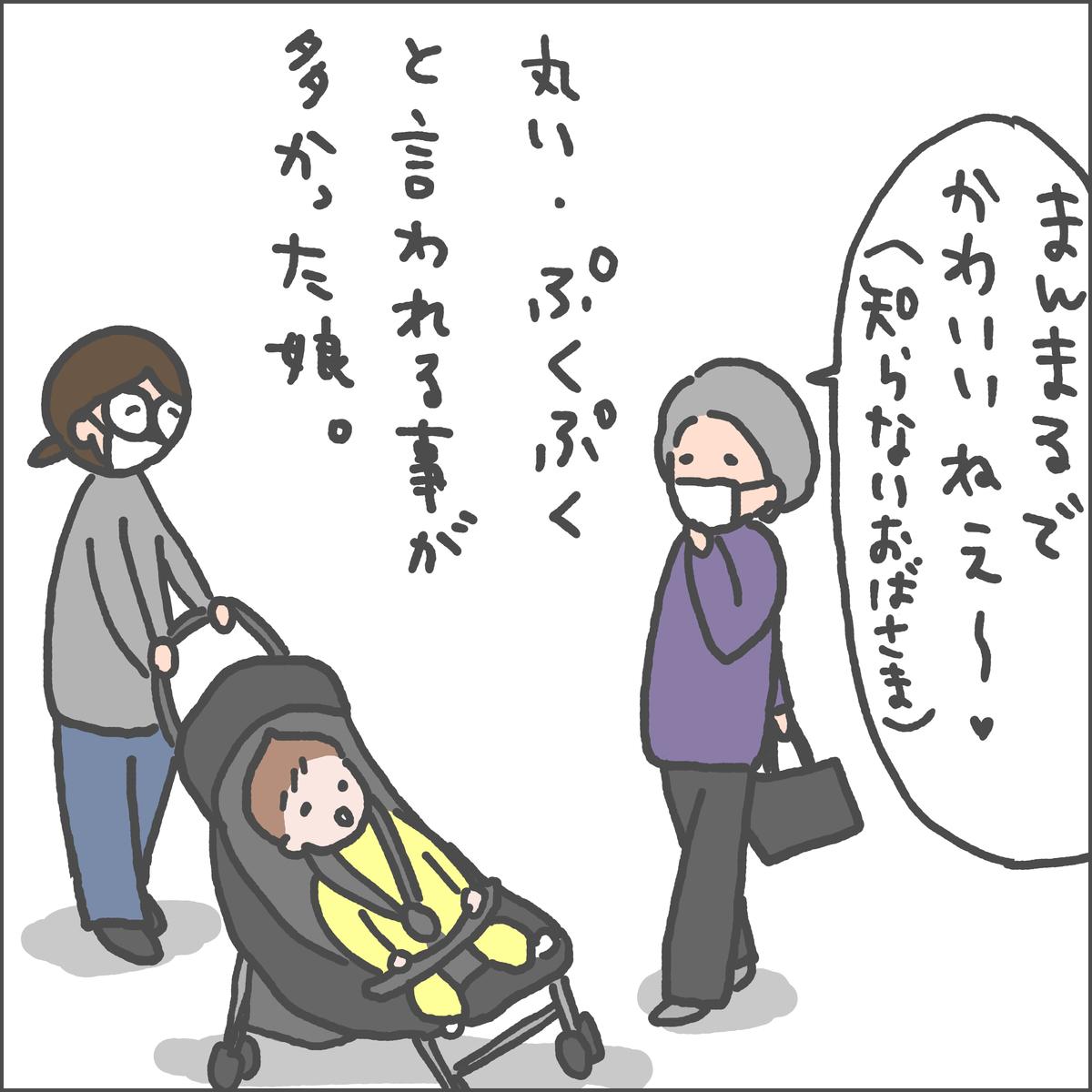 f:id:ika_yoshi:20210411214731j:plain