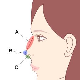女性の鼻を横から見たイラスト。