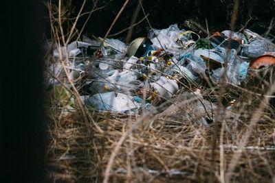 不法投棄されたゴミの山。