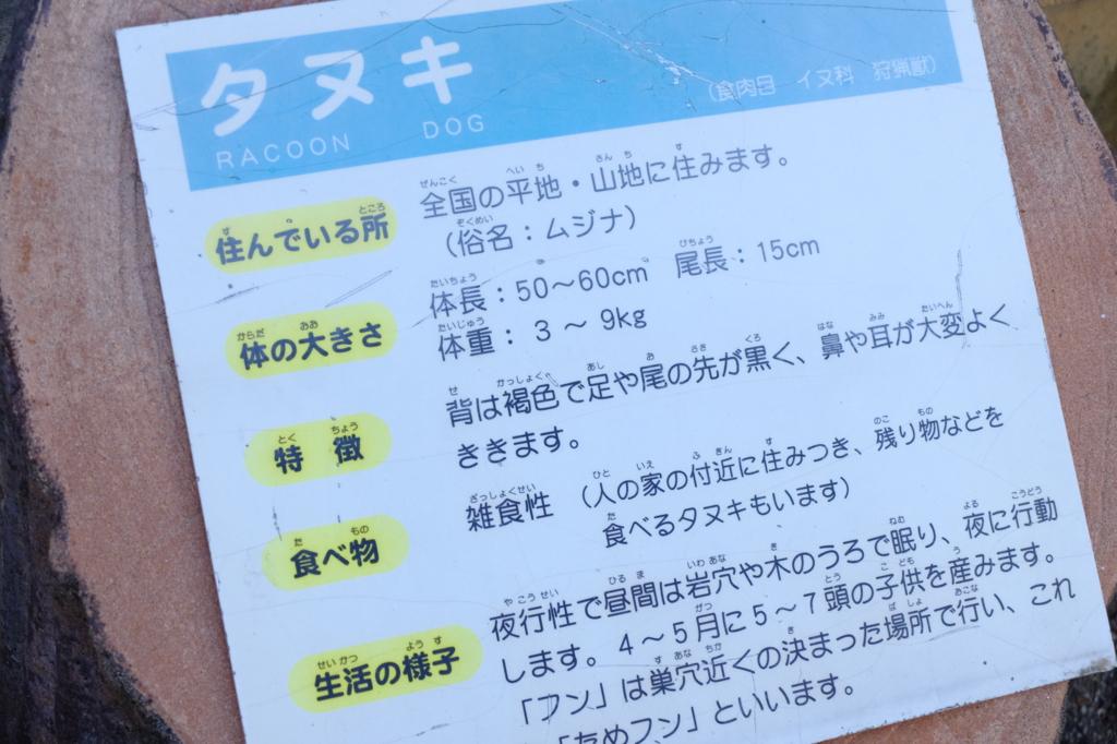 f:id:ikarikezuri:20170507083727j:plain