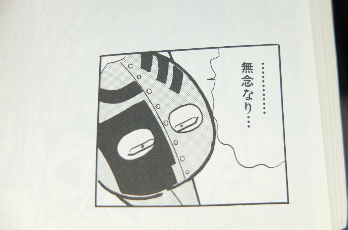f:id:ikarikezuri:20190602064922j:plain