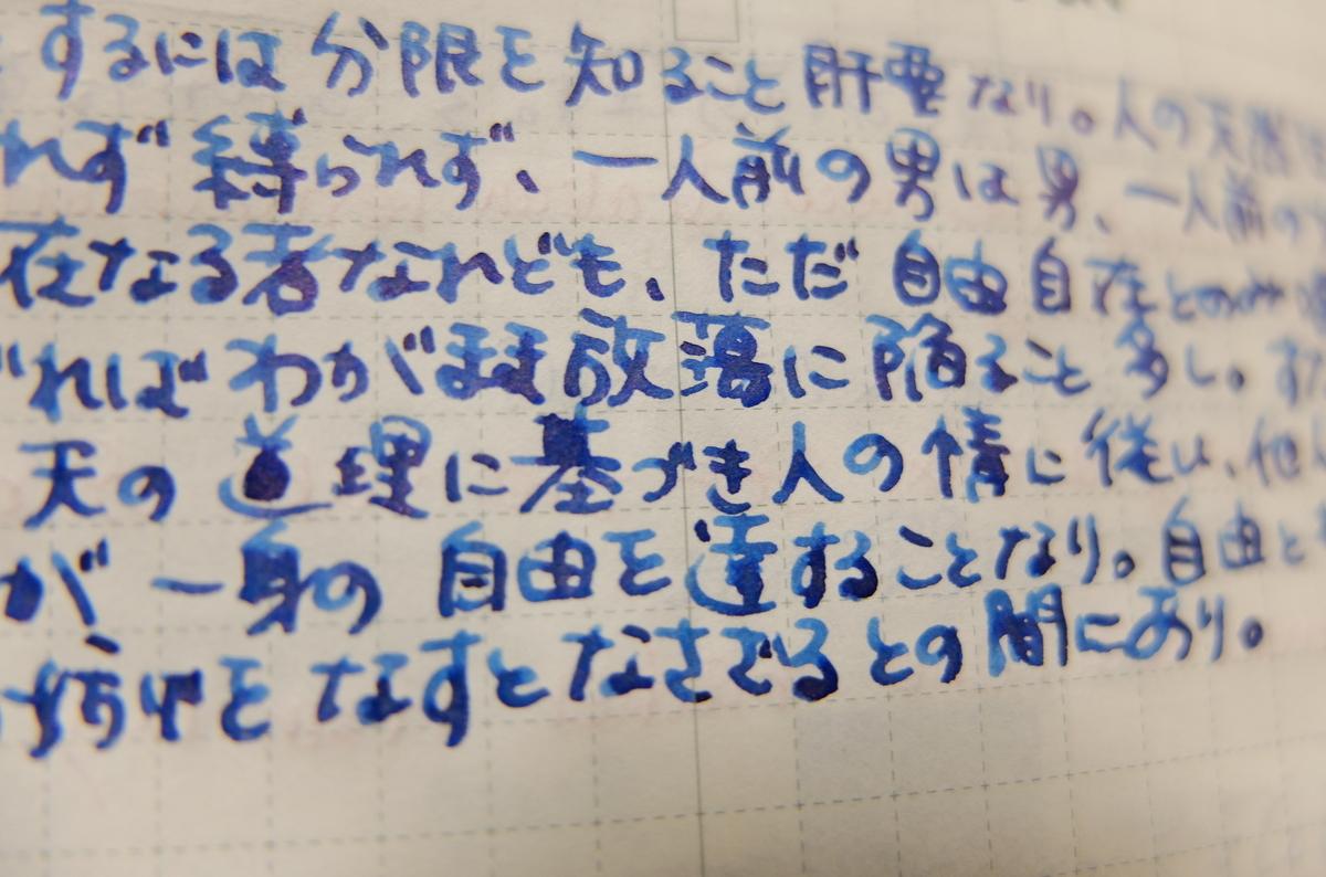 f:id:ikarikezuri:20191113043318j:plain