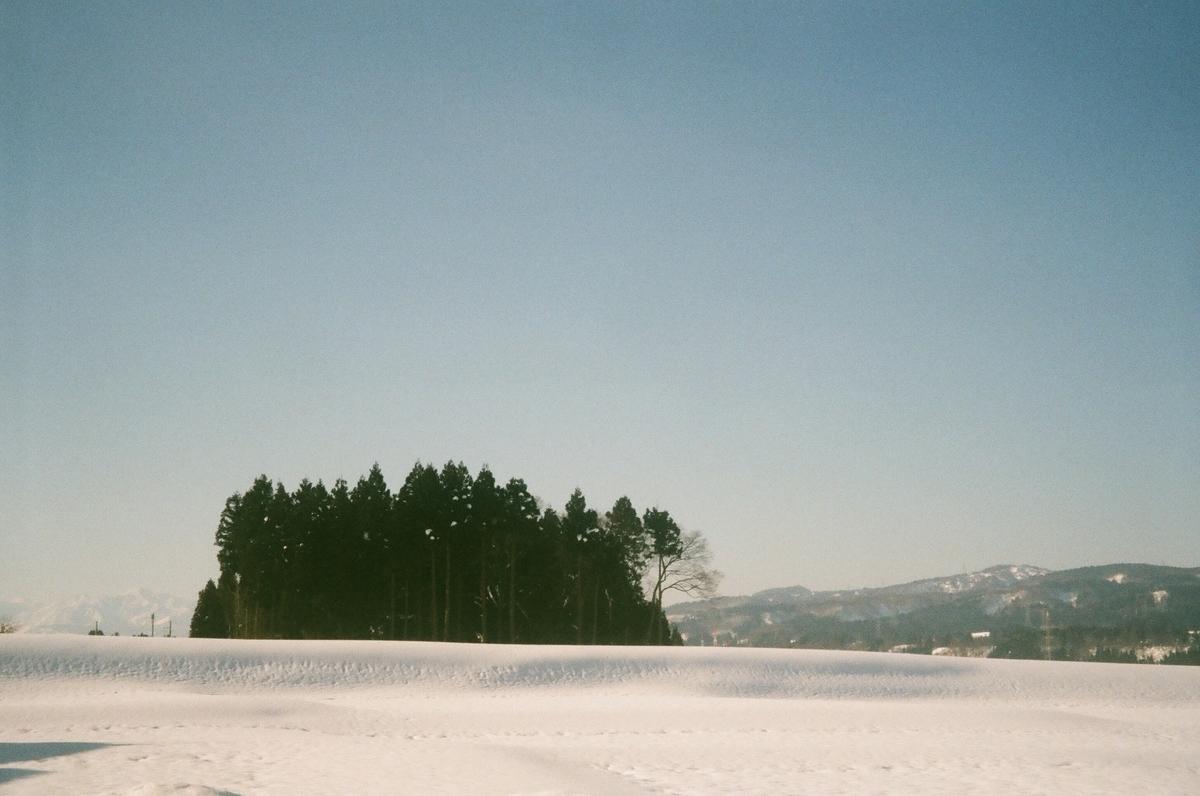 f:id:ikarikezuri:20200425134543j:plain