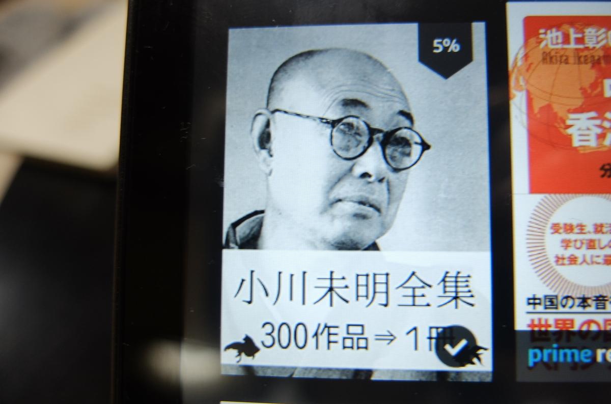 f:id:ikarikezuri:20201020044617j:plain