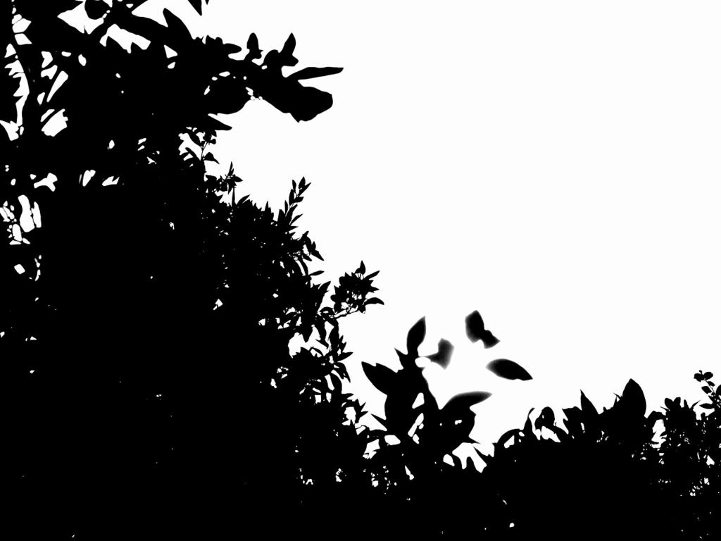f:id:ikashiya:20170106003629j:plain